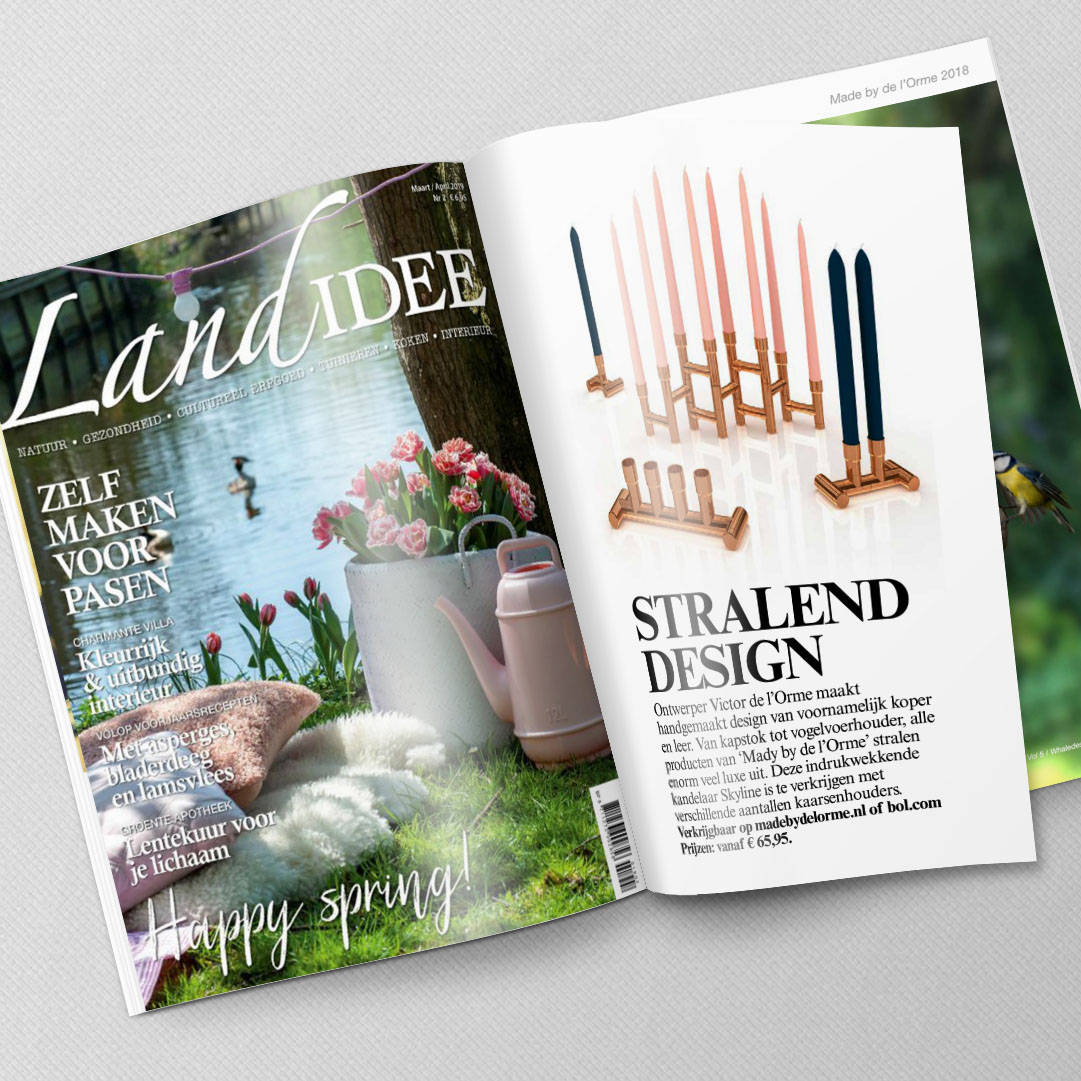 magazine-mockup-Landidee